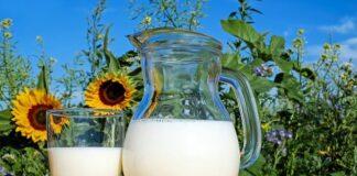 milk shake do włosów